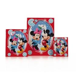 Punga de Iarna Mickey Mouse M
