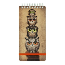 Carnet to do Book Owls