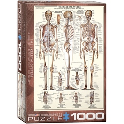 Puzzle 1000 piese The Skeletal System