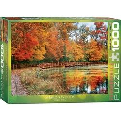 Puzzle 1000 piese Sharon Woods Ohio