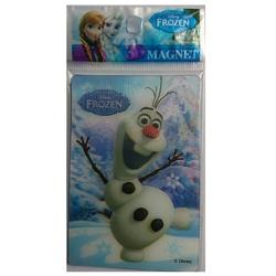 Magnet 3D Frozen