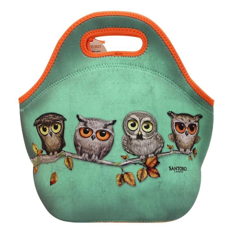 Grumpy Owl Geanta pranz Book Owl
