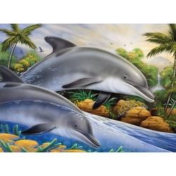 Prima pictura pe nr junior mare - Insula delfinilor