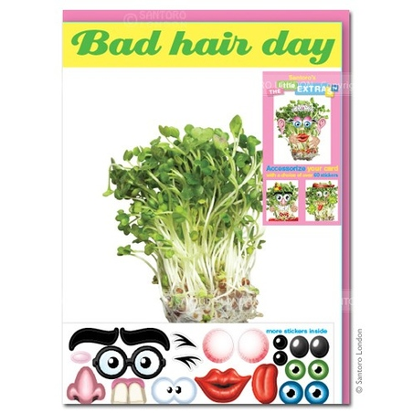 Felicitare amuzanta Little Extra Bad Hair Day (cress)