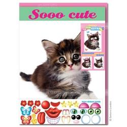Felicitare amuzanta Little Extra Pui de Pisica