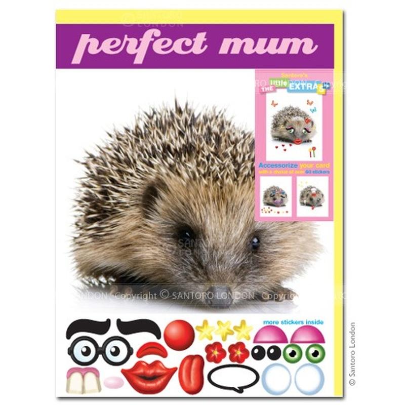 Felicitare amuzanta Little Extra Arici. o felicitare draguta, accesorizabila pentru cei dragi.