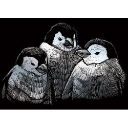 Set gravura pe folie argintie mica Pinguin