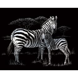 Set gravura pe folie argintie Zebra importator