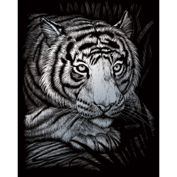 Set gravura pe folie argintie Tigru alb importator