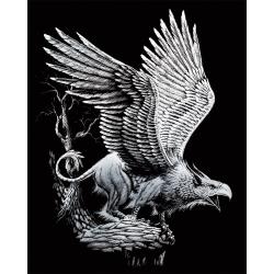 Set gravura pe folie argintie Grifon importator