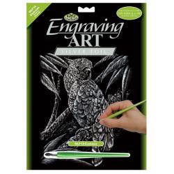 Set gravura pe folie argintie Papagal importator