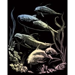 Set gravura pe folie holografica Delfin