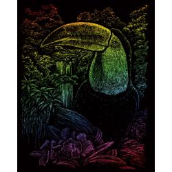 Set gravura pe folie curcubeu Tucan