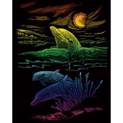 Set gravura pe folie curcubeu Reciful delfinilor