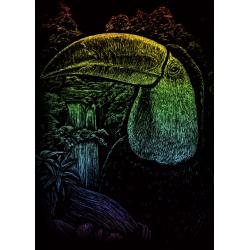Set gravura pe folie curcubeu mica Tucan
