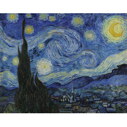 Pictura ghidata pe panza seria Tablouri celebre Starry Night importator