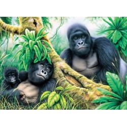 Pictura pe numere junior mare Gorile de munte