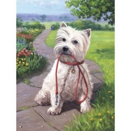 Prima mea pictura pe nr.junior mic-Catel Westie 24x33 cm