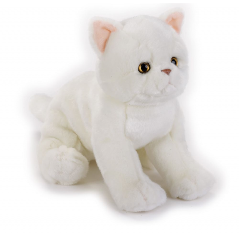 Jucarie plus National Geographic Pisica Exotic Shorthair
