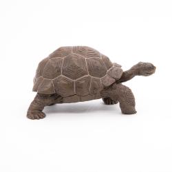 Testoasa galapagos - Figurina Papo importator