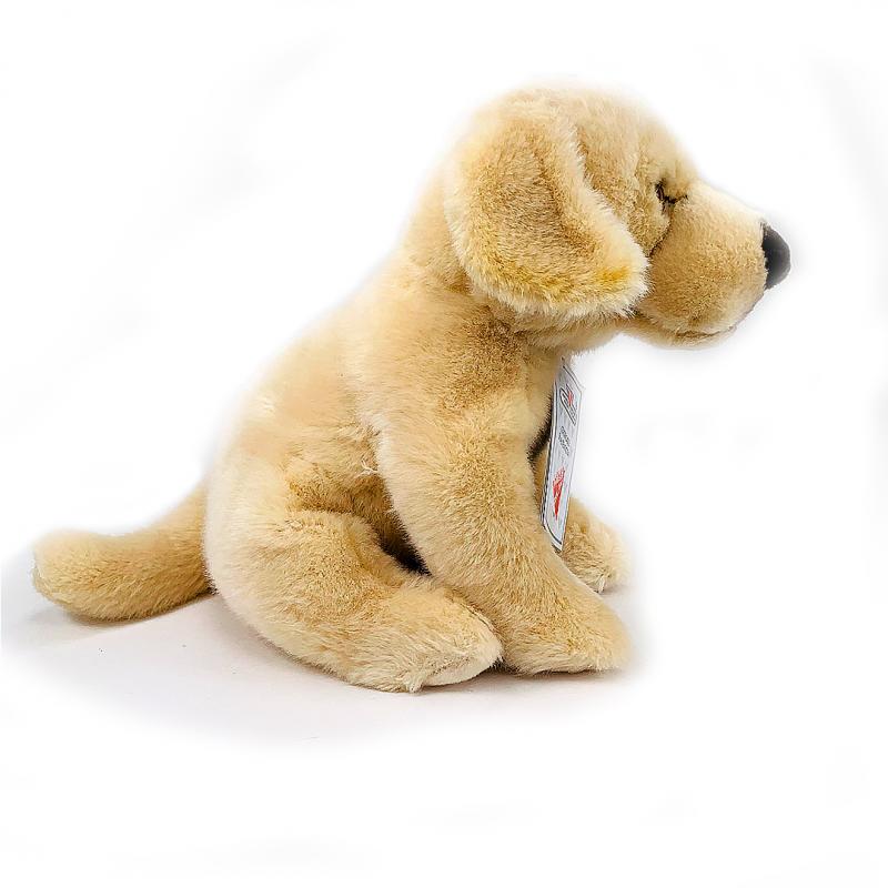 Catel din plus Labrador mic