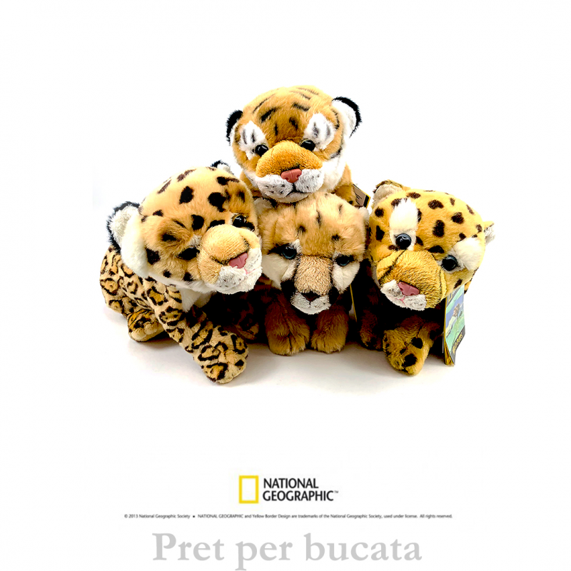 Jucarie din plus National Geographic Pui felina 26cm