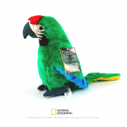 Papagal ara verde- jucarie copii