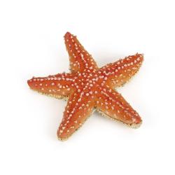 Figurina steluta de mare. o jucarie replica a stelei de mare