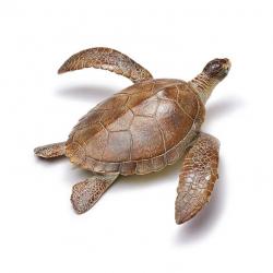 Broasca testoasa de mare - figurina educationala