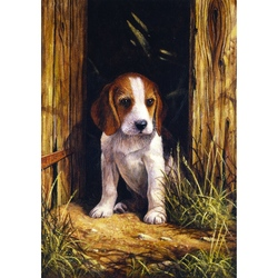Prima mea pictura pe numere - Catelus Beagle