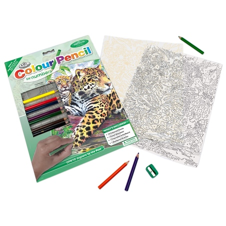 Set creativ educativ - Coloreaza pe numere - Jaguar