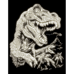 Set gravura pe folie fosforescenta - T-rex