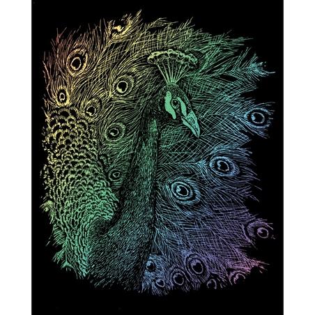 Set gravura pe folie curcubeu - Paun