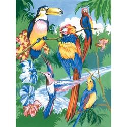 Prima mea pictura pe nr.junior mic - Pasari tropicale