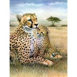 Prima mea pictura pe numere junior mica - Leopard