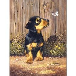 Prima mea pictura pe nr.junior mic - Catelus